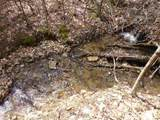62 Acres Upper Back Creek Rd - Photo 7
