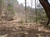 62 Acres Upper Back Creek Rd - Photo 8