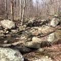 2465 Spruce Creek Ln - Photo 11