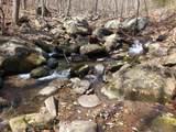 2465 Spruce Creek Ln - Photo 12