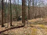 2465 Spruce Creek Ln - Photo 2