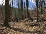 2465 Spruce Creek Ln - Photo 20