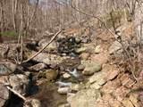 2465 Spruce Creek Ln - Photo 26