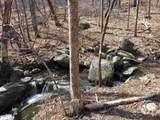 2465 Spruce Creek Ln - Photo 33