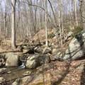 2465 Spruce Creek Ln - Photo 36