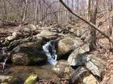 2465 Spruce Creek Ln - Photo 5