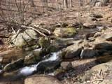 2465 Spruce Creek Ln - Photo 9