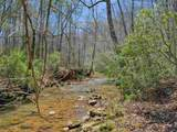 TBD Cove Creek Ln - Photo 7