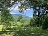 6091 Rockfish Valley Hwy - Photo 4