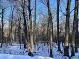 1028 Blue Ridge Dr - Photo 1