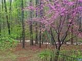 27 Shingle Oak Ln - Photo 31