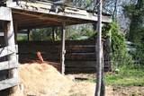 413 University Farm Rd - Photo 19
