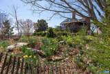 1843 Cabell Rd - Photo 42