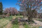 1843 Cabell Rd - Photo 45