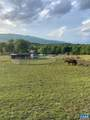 2490 Little Calf Pasture Hwy - Photo 12