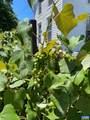 772 Poplar Spring Rd - Photo 72