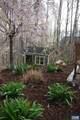 4245 Woodthrush Ln - Photo 8