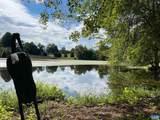 156 Lake View Dr - Photo 43