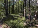 Wilderness Ln - Photo 4