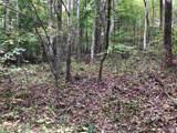 Wilderness Ln - Photo 6