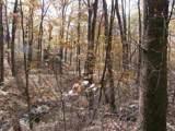 Lot H Old Stoney Creek Rd - Photo 15