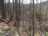 0 Mint Springs Park - Photo 11