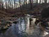 0 Mint Springs Park - Photo 7
