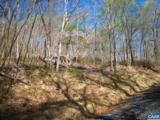 Tree House Pl - Photo 7