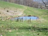 1543 Mountain Tpke - Photo 5
