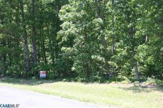 3D Paddock Wood Rd, KESWICK, VA 22947 (MLS #562037) :: Strong Team REALTORS