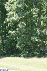3C Paddock Wood Rd, KESWICK, VA 22947 (MLS #562039) :: Strong Team REALTORS