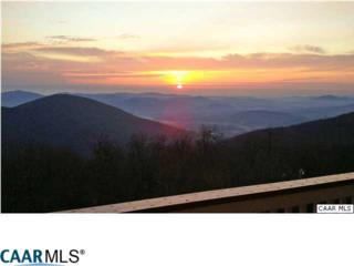 1922 High Ridge Pl Condos, WINTERGREEN, VA 22958 (MLS #562407) :: Strong Team REALTORS