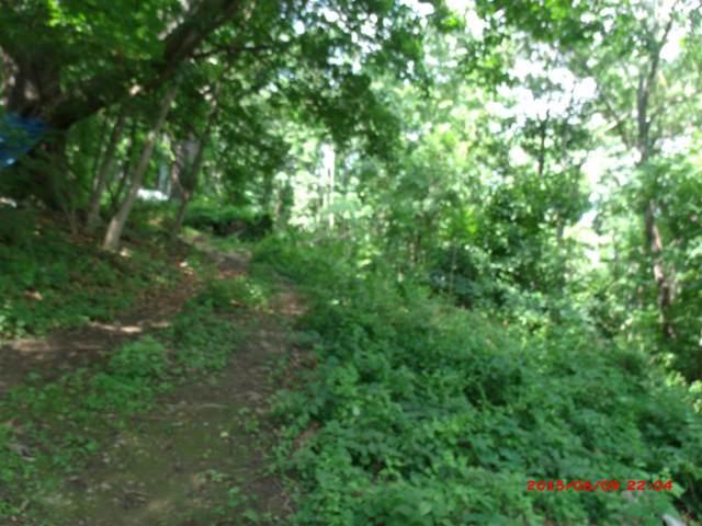 101 W Gay St, STAUNTON, VA 24401 (MLS #180277) :: Jamie White Real Estate