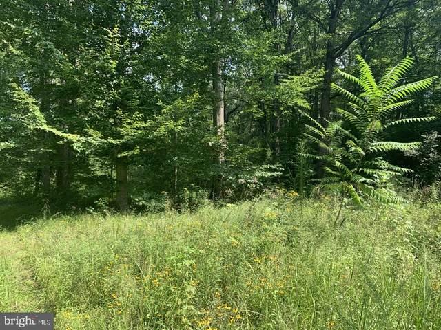 8211 Sleepy Hollow Ln, Partlow, VA 22534 (MLS #37566) :: KK Homes