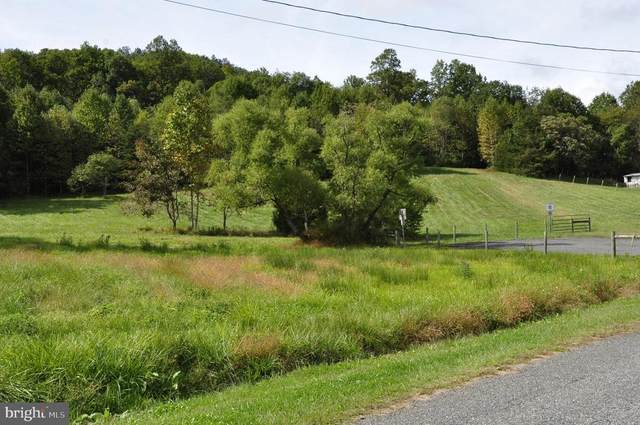 Hollowback Lane, Madison, VA 77494 (MLS #38692) :: Kline & Co. Real Estate
