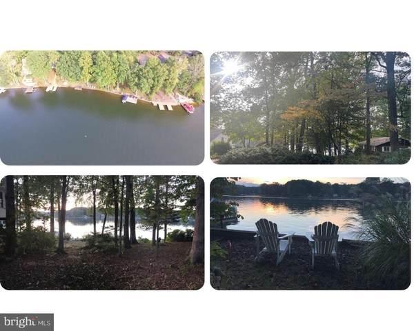 3115 Lakeview Pkwy, LOCUST GROVE, VA 22508 (MLS #38774) :: KK Homes