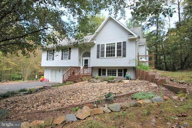 11243 Holland Ct, CULPEPER, VA 22701 (MLS #38795) :: Real Estate III