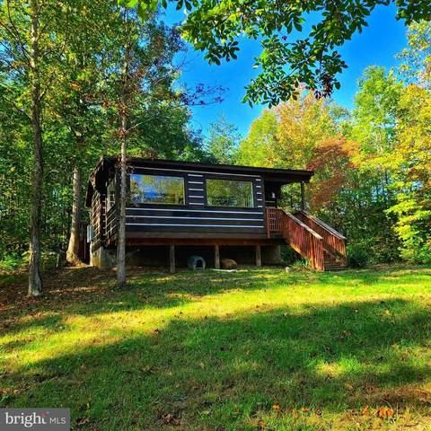 12 Sacred Heart, MINERAL, VA 23117 (MLS #38798) :: Real Estate III