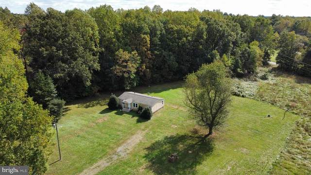 18111 Terry's Run Rd, ORANGE, VA 22960 (MLS #38799) :: Real Estate III