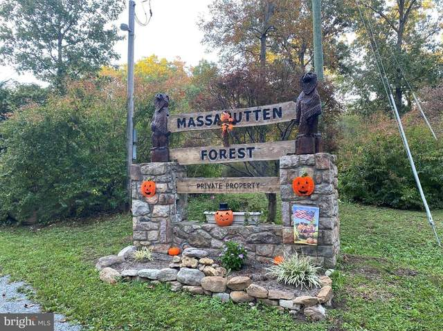 0 Massanutten Forest, Luray, VA 22835 (MLS #38859) :: Kline & Co. Real Estate