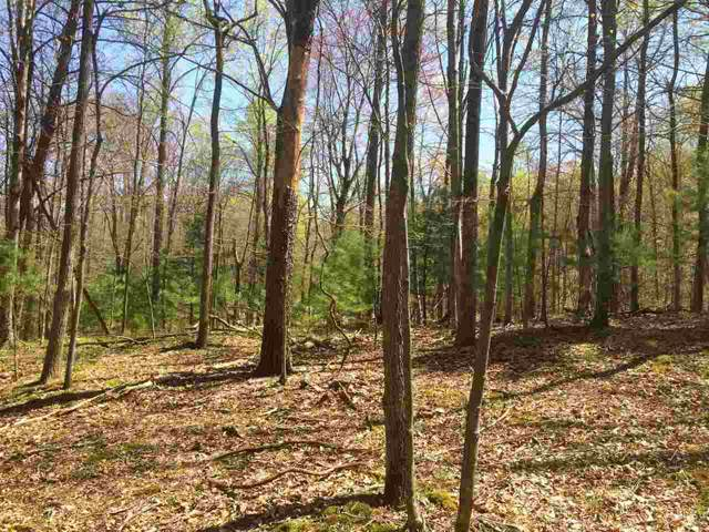 Greystone Dr Lot 8, AMHERST, VA 24521 (MLS #531181) :: Real Estate III