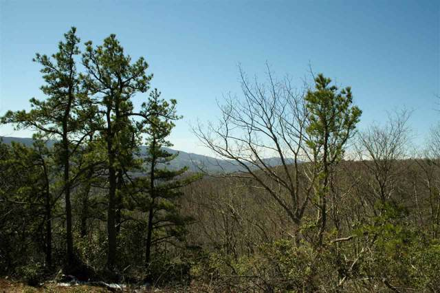 96 N Summit Dr, Monterey, VA 24465 (MLS #537711) :: Jamie White Real Estate