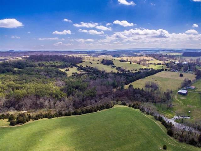TBD Cliff View Ln, STAUNTON, VA 24401 (MLS #539418) :: Real Estate III
