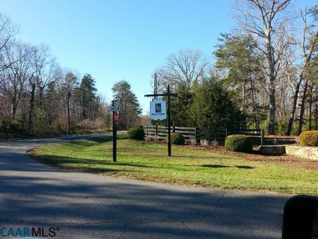 lot 5 Mossy Brook Ct, Earlysville, VA 22911 (MLS #540984) :: KK Homes