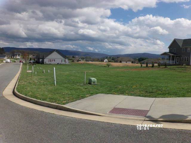 257 Jocelyn Ln, WAYNESBORO, VA 22980 (MLS #545252) :: Real Estate III