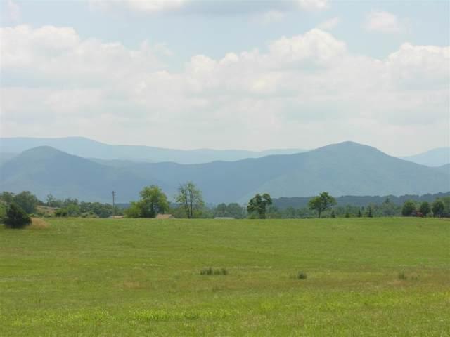 Lot 9 Ridgemore Dr, Raphine, VA 24472 (MLS #547750) :: Jamie White Real Estate