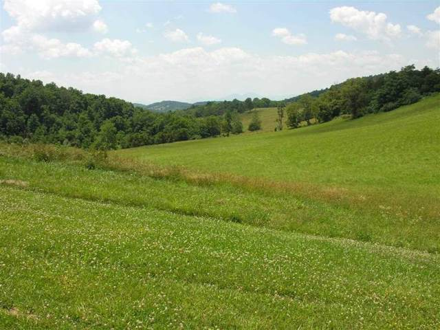 Lot 25 Koogler Trail, Raphine, VA 24472 (MLS #547751) :: Jamie White Real Estate