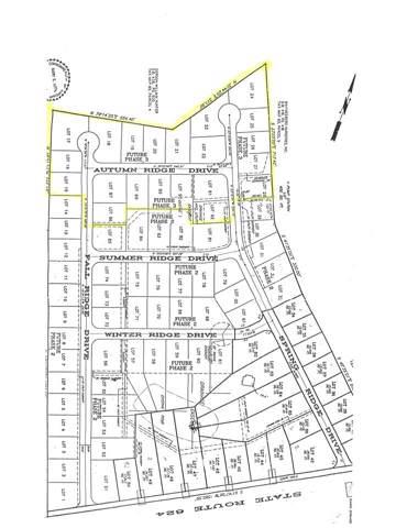 TBD Tbd, Stuarts Draft, VA 24477 (MLS #559797) :: Jamie White Real Estate