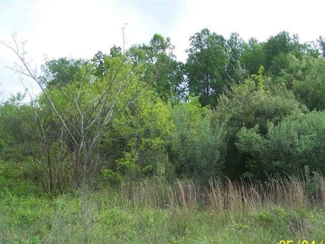 TBD Lake Dr, Crimora, VA 24431 (MLS #561243) :: Jamie White Real Estate