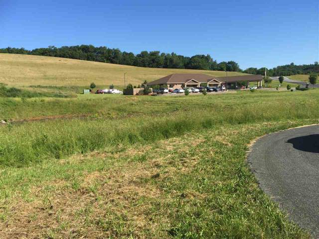 Lot 1 Seth Dr, STAUNTON, VA 24401 (MLS #562962) :: Real Estate III